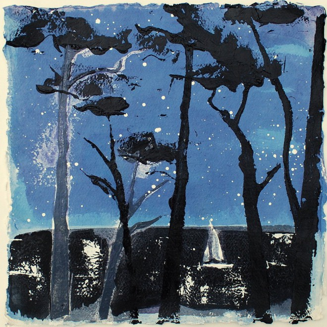 Starry night sail, St. Mawes, Cornwall £85